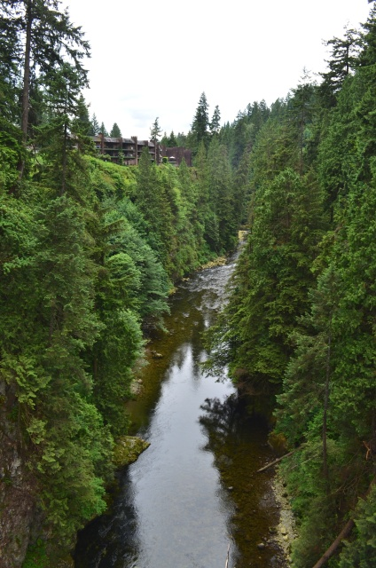 View of Capilano River, looking downstream from bridge.